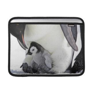Emperor Penguin | Snow Hill Island Sleeve For MacBook Air