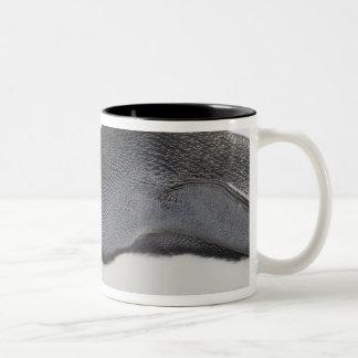 Emperor Penguin, Snow Hill Island, Weddell Sea, Two-Tone Coffee Mug