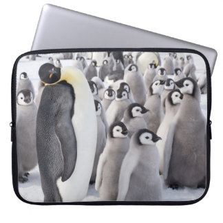Emperor Penguin with Chicks - laptop case