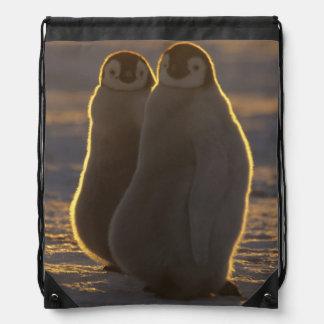 Emperor Penguins, Aptenodytes forsteri), 2 Drawstring Bag