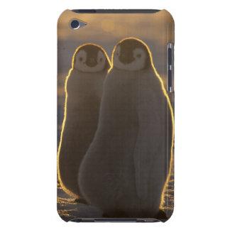 Emperor Penguins, Aptenodytes forsteri), 2 iPod Touch Case