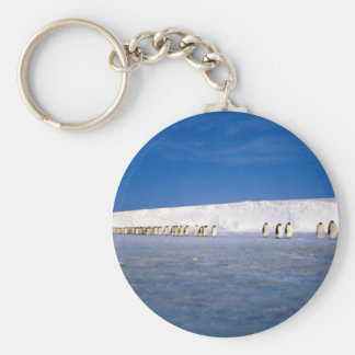 Emperor penguins by moonlight, Antarctica Key Chains
