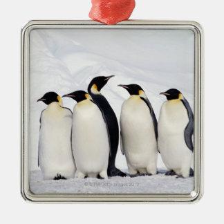 Emperor Penguins Christmas Ornament