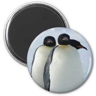 Emperor Penguins Huddled 6 Cm Round Magnet