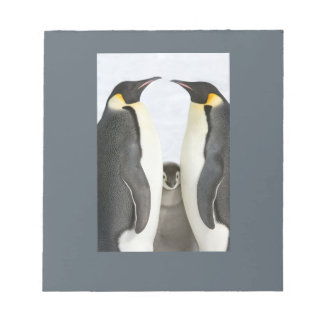 Emperor Penguins with Chick note pad