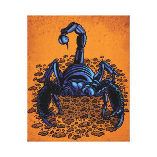 Emperor Scorpion Canvas Print