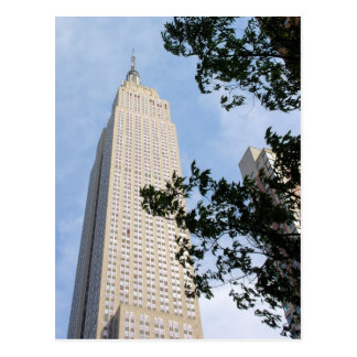 Empire State Building ... New York City Postcard