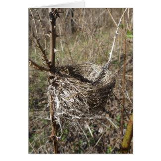 Empty Nest Card