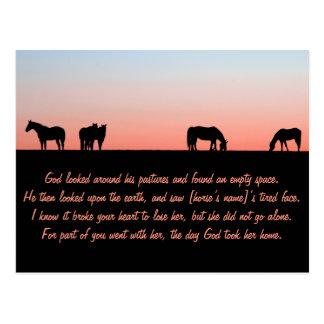 Empty Pasture Postcard
