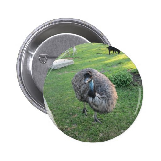 Emu Pinback Buttons
