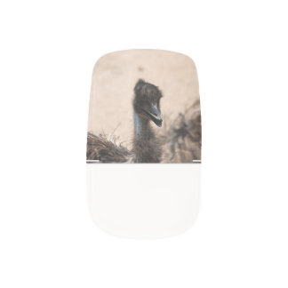 Emu Bird Minx ® Nail Art