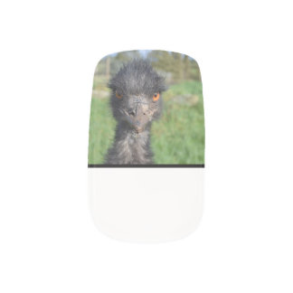 Emu Bird Fingernail Transfers