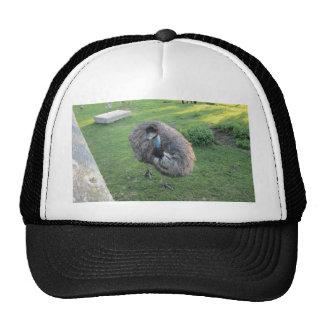 Emu Cap