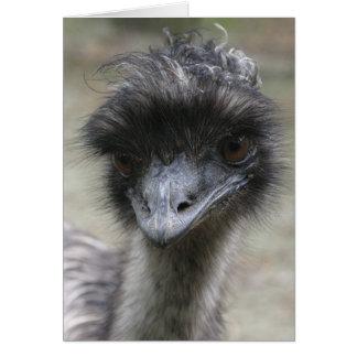Emu Card