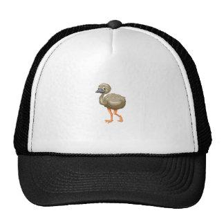 Emu cartoon cap