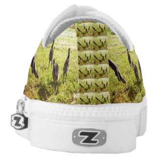 Emu Chicks And Foot, Zipz Printed Sneakers. Low Tops