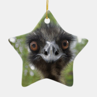 Emu Christmas Ornament