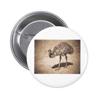 Emu Drawing Pinback Buttons