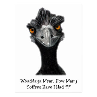 Emu: Funny, Humor: Too Many Coffees: Art Postcard