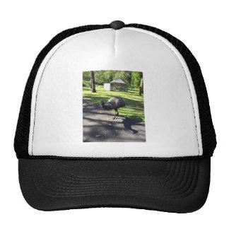 Emu Hat