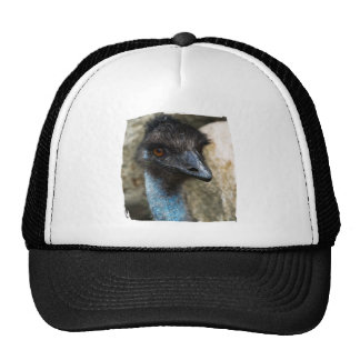 Emu Head Hat
