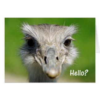 Emu Hello Card