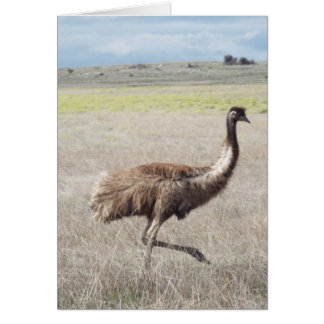emu strut card