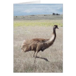 emu strut greeting card