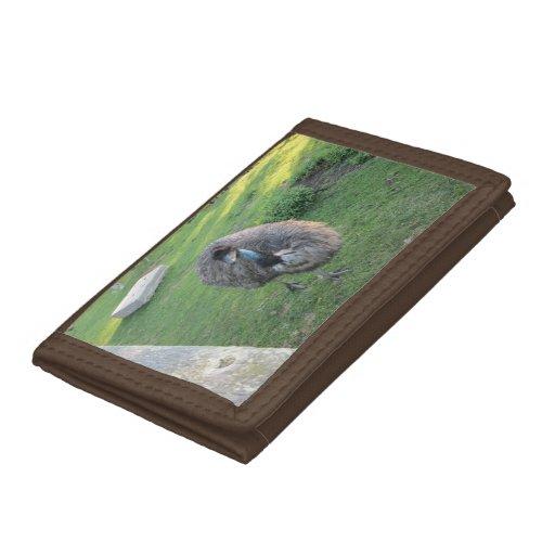 Emu Wallet