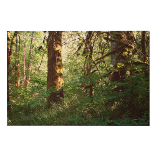 Enchanted Forest Wood Panel