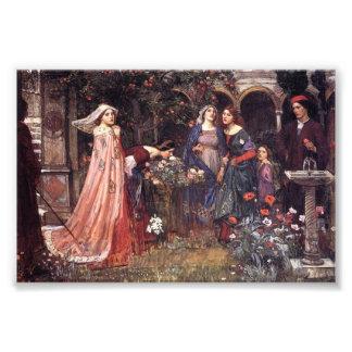 Enchanted Garden Photograph