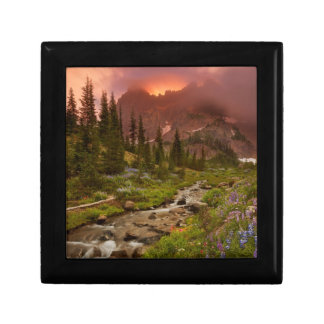 Enchanted Meadows Gift Box