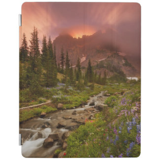 Enchanted Meadows iPad Cover