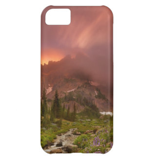 Enchanted Meadows iPhone 5C Case