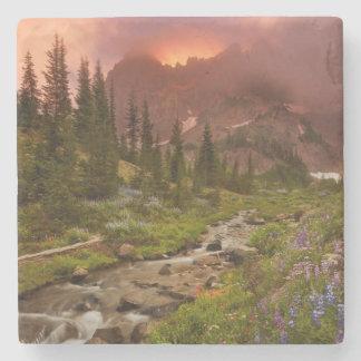 Enchanted Meadows Stone Coaster