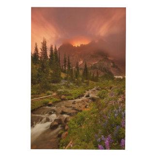 Enchanted Meadows Wood Print