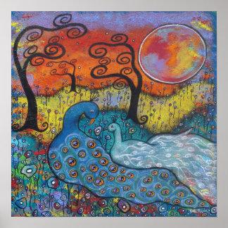 Enchanted Peacocks Posters
