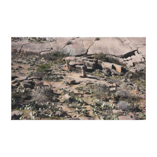 Enchanted Rock Canvas Print