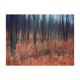 Enchanting Forest Canvas Prints