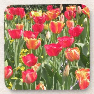 Enchanting Tulips Coasters Set