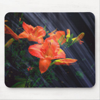 ENCHANTMENT  MOUSEPAD