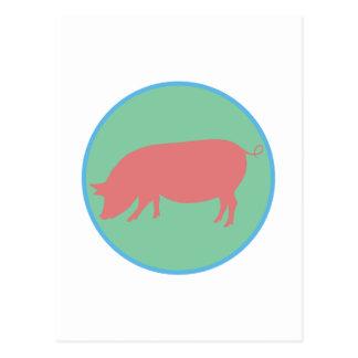 Encircled Swine Postcard