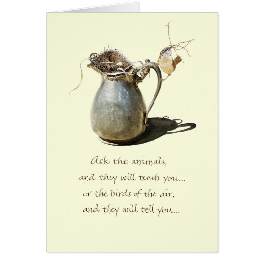 Encouragement/Wren Pitcher Card