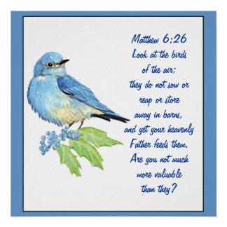 Encouraging Bible Scripture Matthew Bluebird