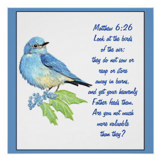 Encouraging Bible Scripture Matthew Bluebird Poster