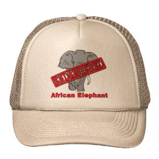 Endangered Animal African Elephant Trucker Hat