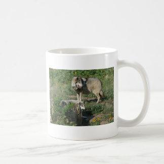 Endangered Mexican Wolf Coffee Mug