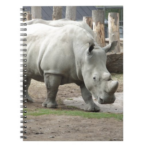 Endangered Northern White Rhinos Note Book