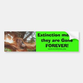 ENDANGERED ORANGUTANS Bumper Sticker Series