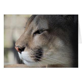 Endangered Species: Florida Panther Card